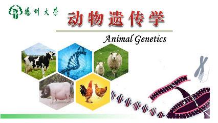 动物染色体的制备 预备知识 具备动物生物化学,微生物学基础,生物统计