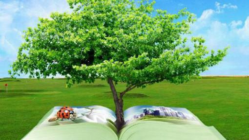 环境学概论