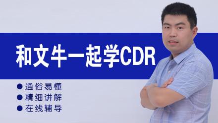 和文牛一起学CDRX8