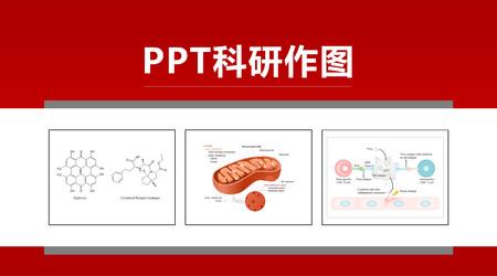 PPT科研作图